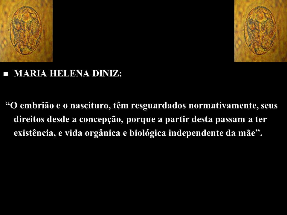 MARIA HELENA DINIZ: