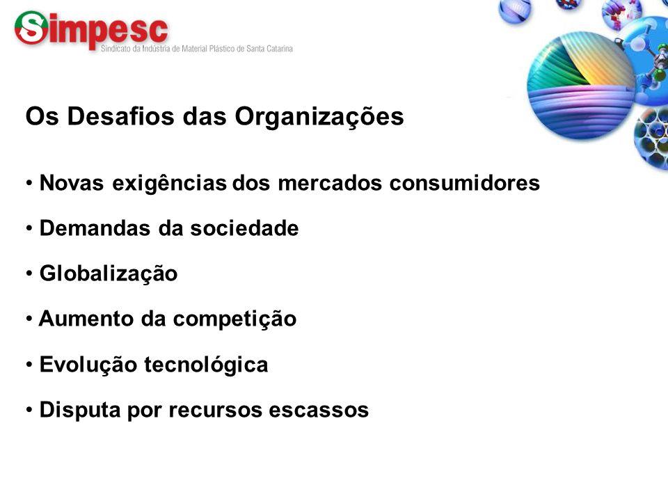 Os Desafios das Organizações