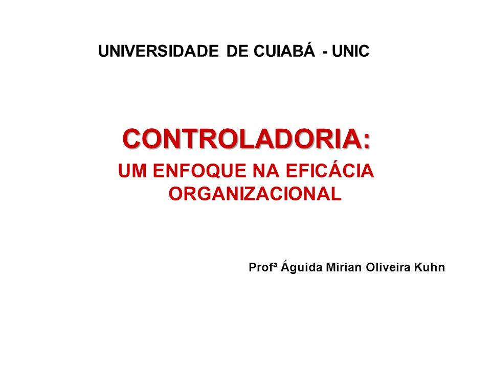 UNIVERSIDADE DE CUIABÁ - UNIC UM ENFOQUE NA EFICÁCIA ORGANIZACIONAL