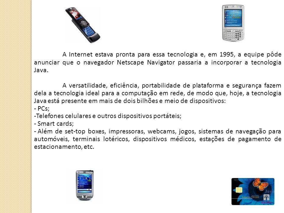 A Internet estava pronta para essa tecnologia e, em 1995, a equipe pôde anunciar que o navegador Netscape Navigator passaria a incorporar a tecnologia Java.