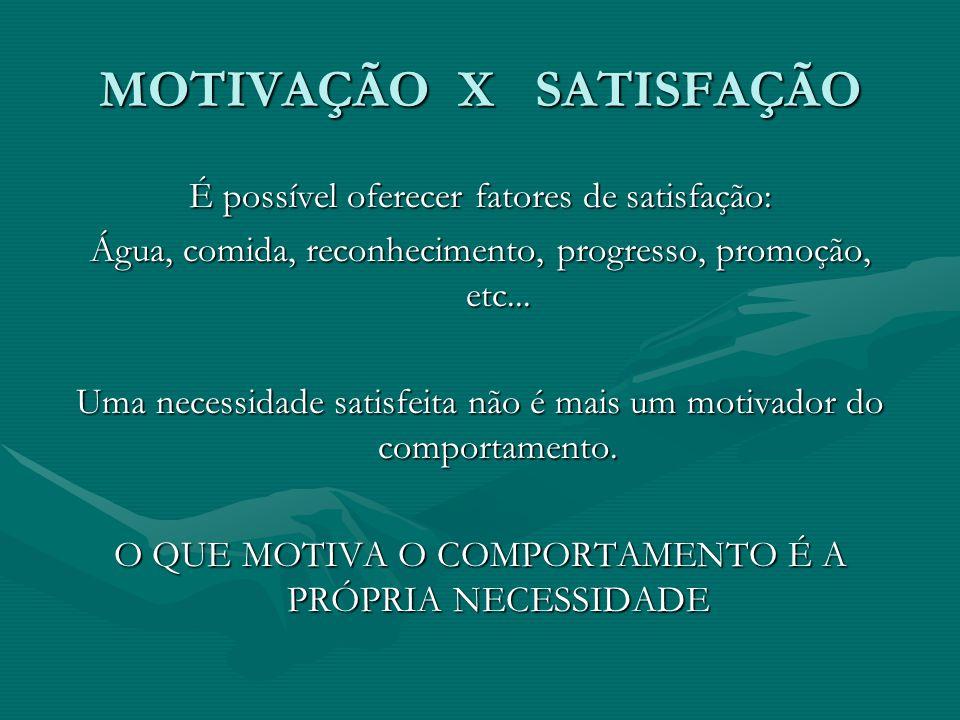 MOTIVAÇÃO X SATISFAÇÃO