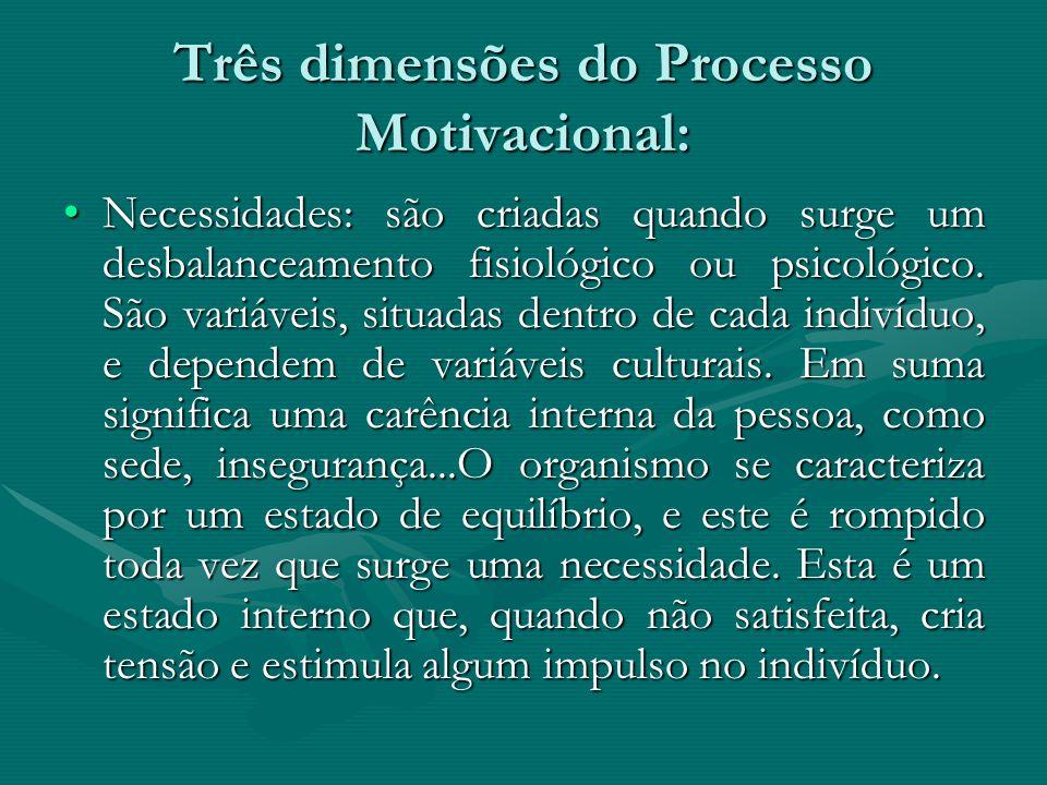 Três dimensões do Processo Motivacional: