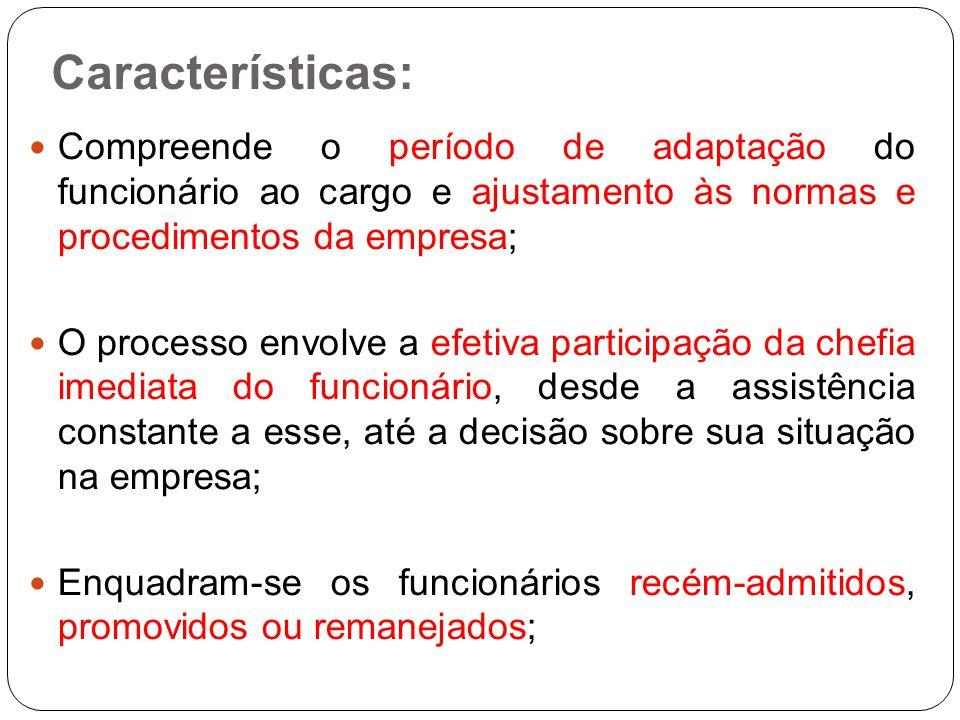 Características: Compreende o período de adaptação do funcionário ao cargo e ajustamento às normas e procedimentos da empresa;