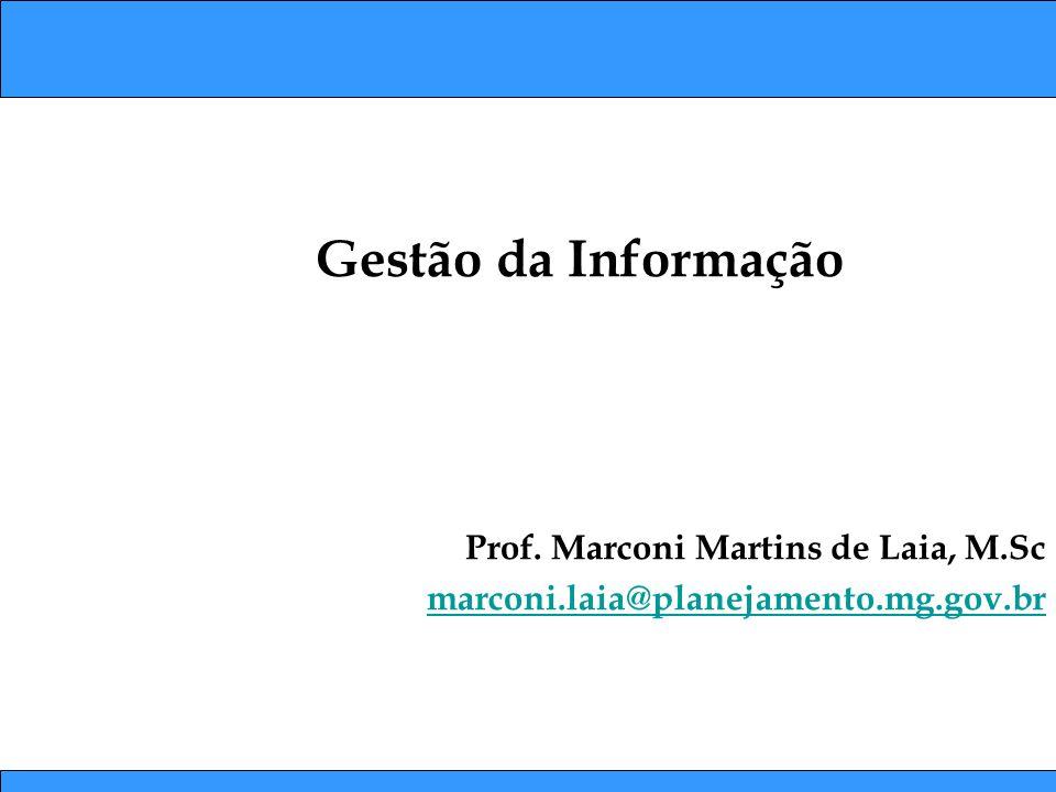 Gestão da Informação Prof. Marconi Martins de Laia, M.Sc