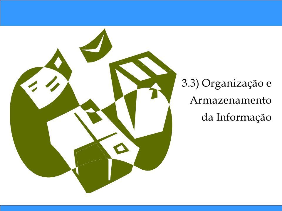 3.3) Organização e Armazenamento da Informação