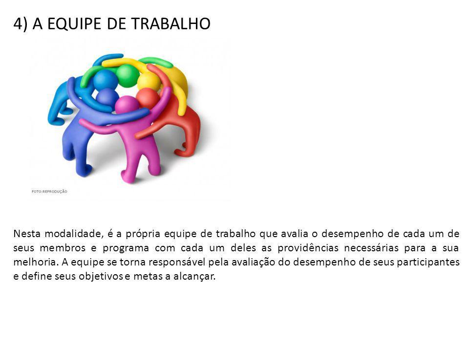 4) A EQUIPE DE TRABALHO