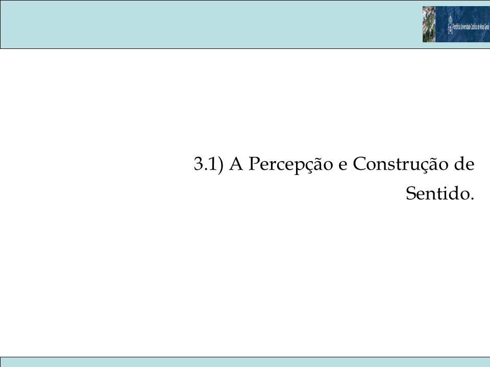 3.1) A Percepção e Construção de Sentido.