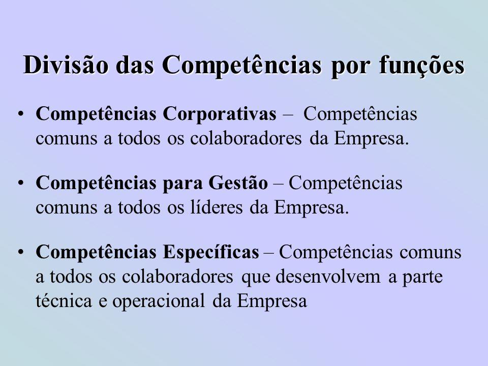 Divisão das Competências por funções