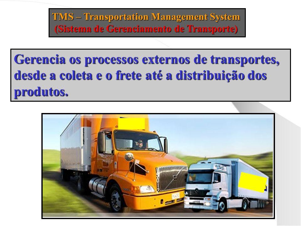 Gerencia os processos externos de transportes,