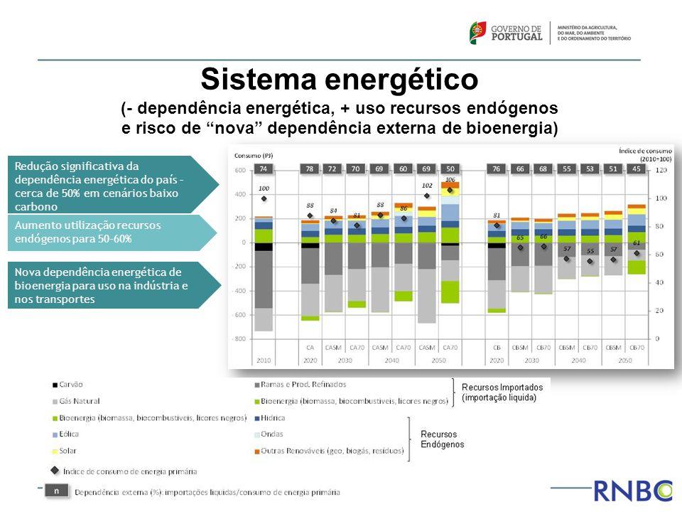 Sistema energético (- dependência energética, + uso recursos endógenos e risco de nova dependência externa de bioenergia)