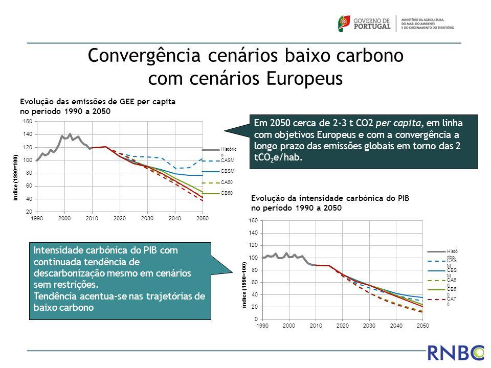 Convergência cenários baixo carbono com cenários Europeus