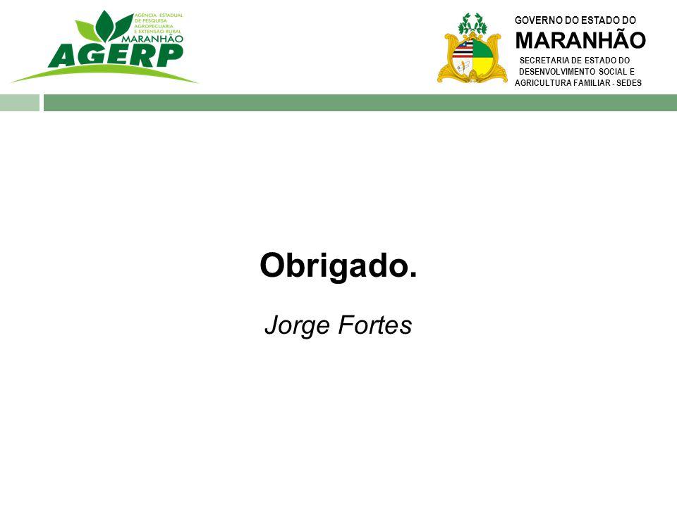 Obrigado. Jorge Fortes MARANHÃO GOVERNO DO ESTADO DO