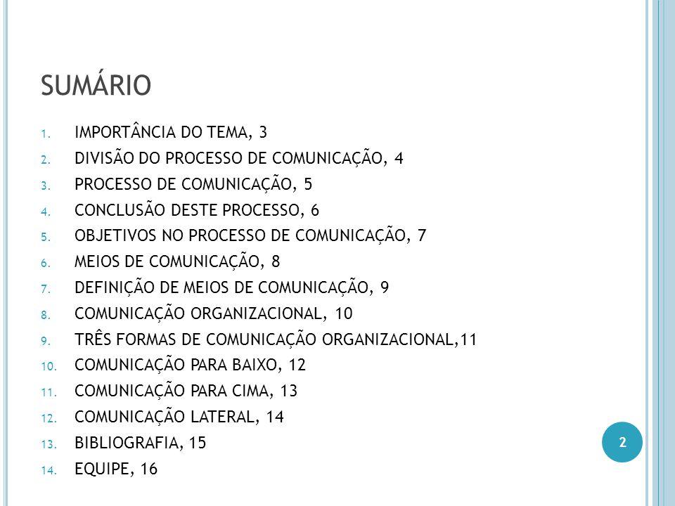 SUMÁRIO IMPORTÂNCIA DO TEMA, 3 DIVISÃO DO PROCESSO DE COMUNICAÇÃO, 4