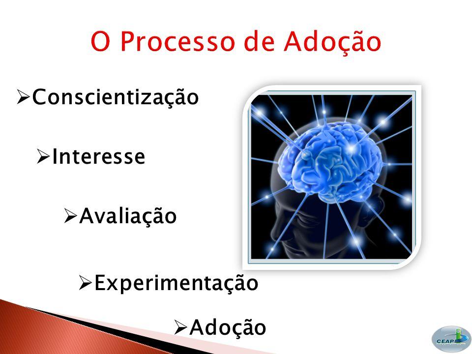 O Processo de Adoção Conscientização Interesse Avaliação