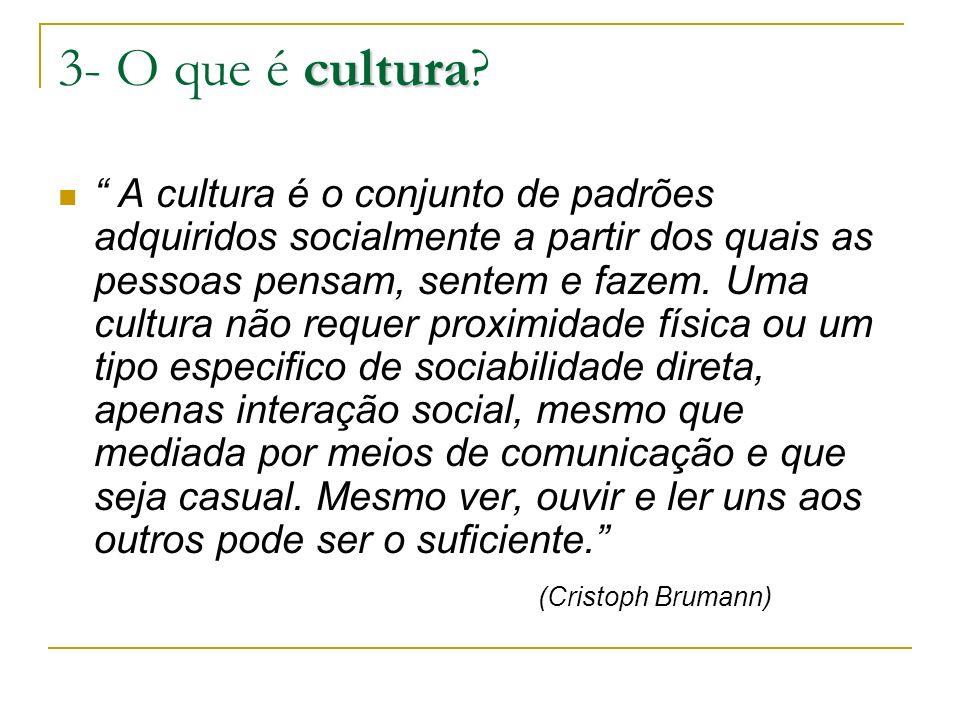 3- O que é cultura