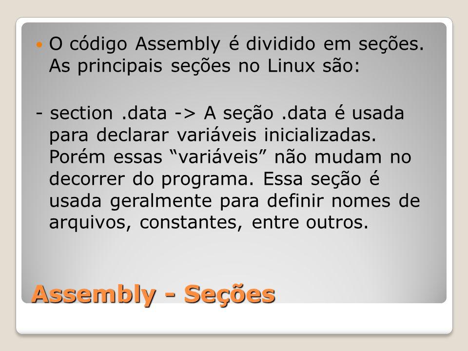 O código Assembly é dividido em seções