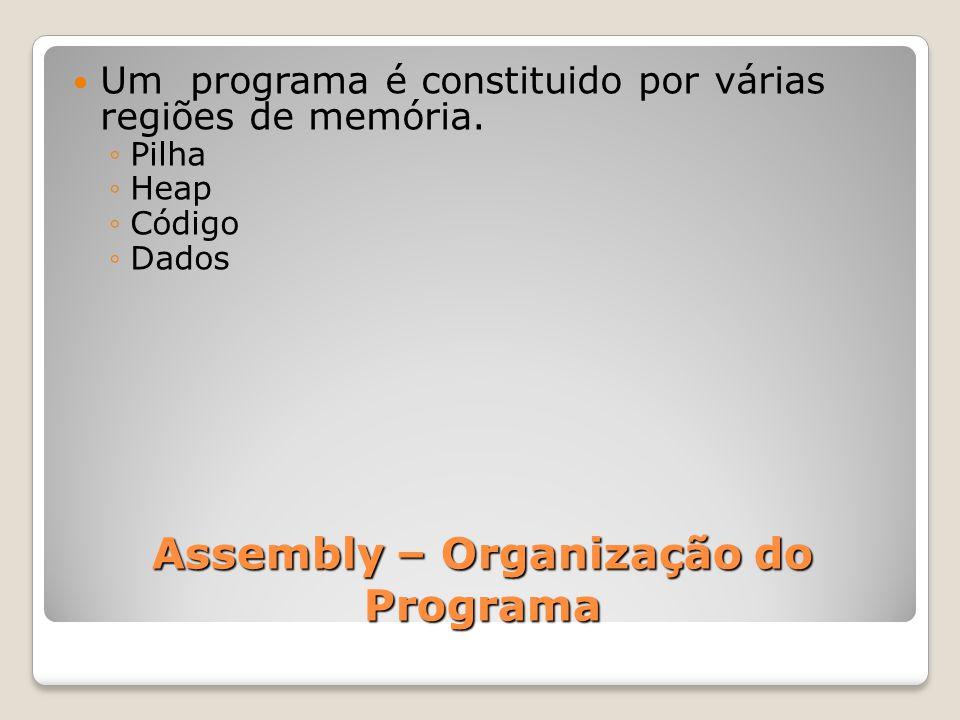 Assembly – Organização do Programa