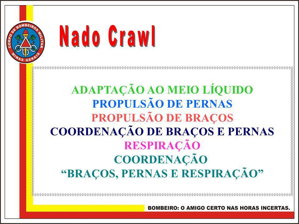 Nado Crawl ADAPTAÇÃO AO MEIO LÍQUIDO PROPULSÃO DE PERNAS