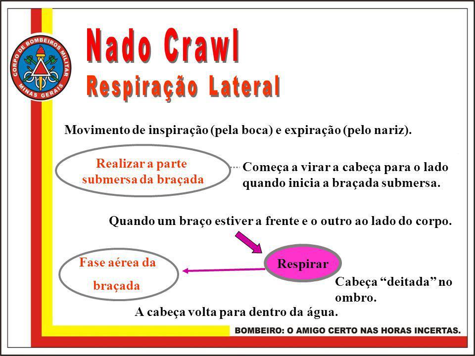 Nado Crawl Respiração Lateral