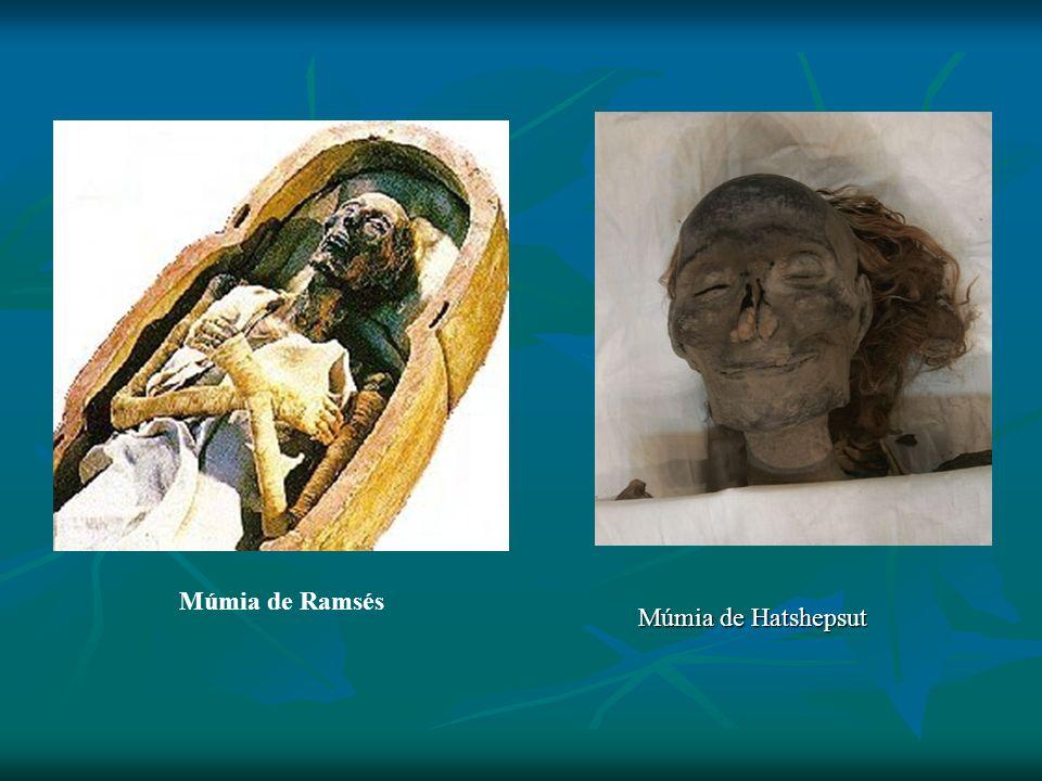 Múmia de Ramsés Múmia de Hatshepsut