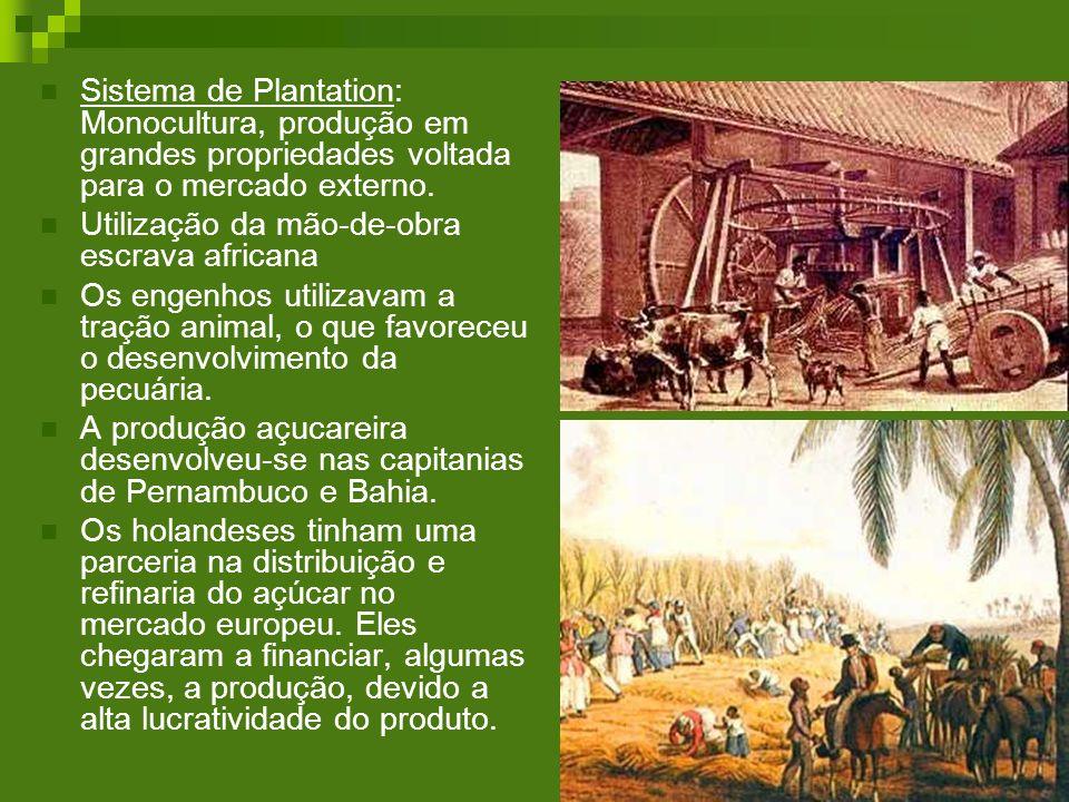 Sistema de Plantation: Monocultura, produção em grandes propriedades voltada para o mercado externo.