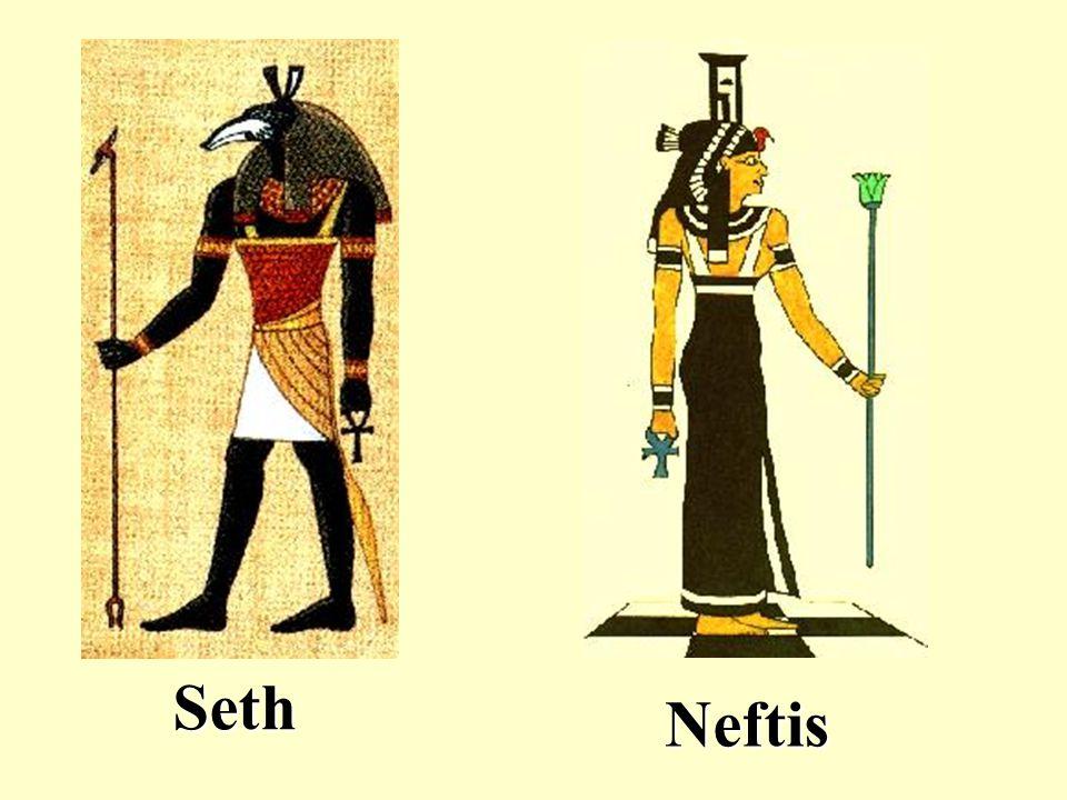 Seth Neftis