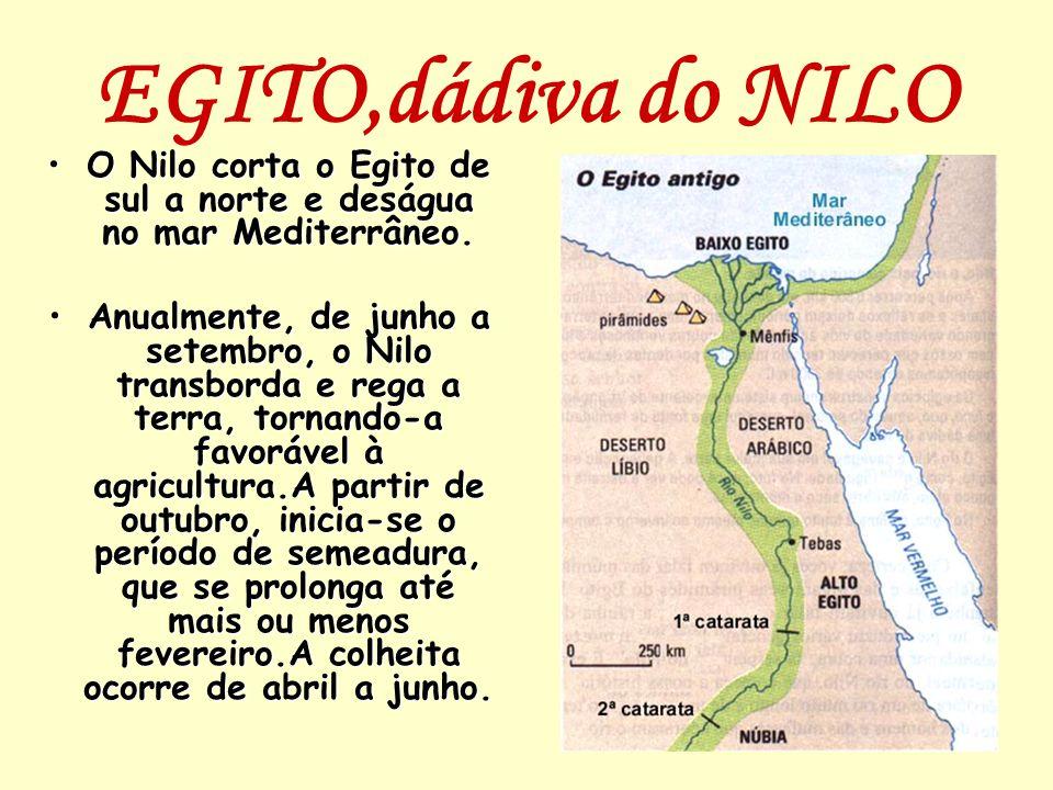 O Nilo corta o Egito de sul a norte e deságua no mar Mediterrâneo.