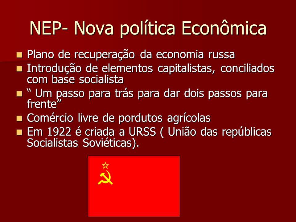 NEP- Nova política Econômica
