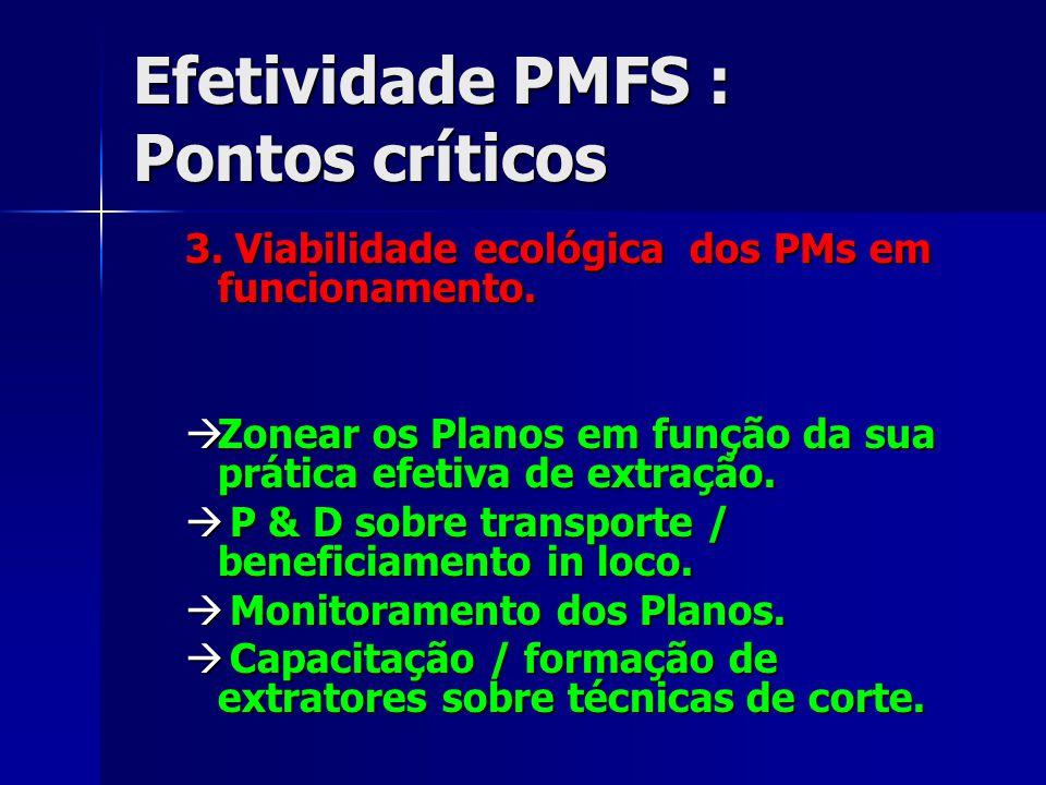 Efetividade PMFS : Pontos críticos