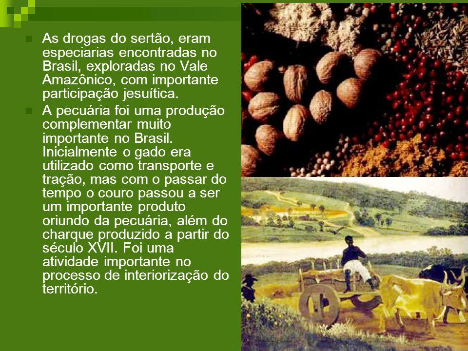 As drogas do sertão, eram especiarias encontradas no Brasil, exploradas no Vale Amazônico, com importante participação jesuítica.