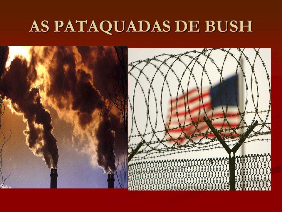 AS PATAQUADAS DE BUSH