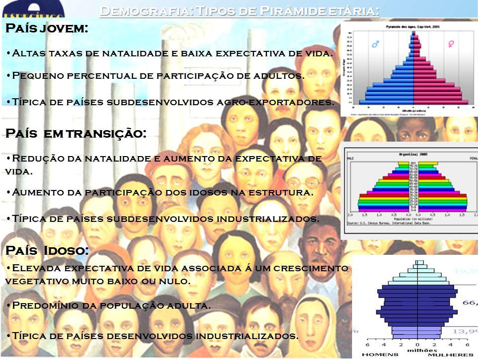 Demografia: Tipos de Pirâmide etária: