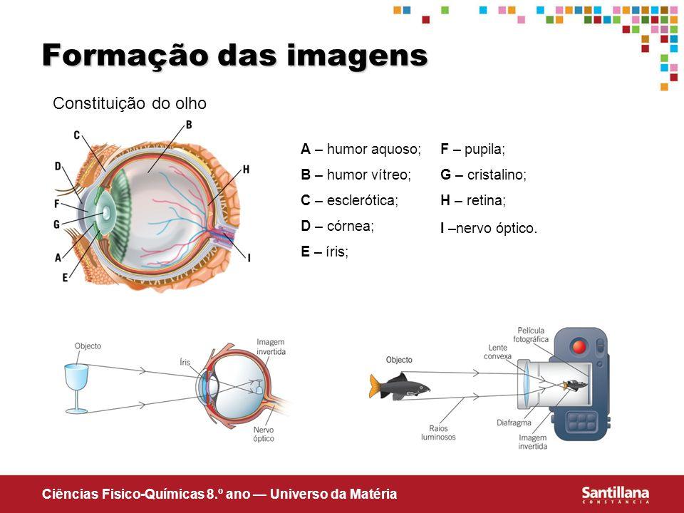 Formação das imagens Constituição do olho A – humor aquoso;
