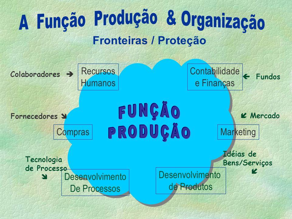 A Função Produção & Organização