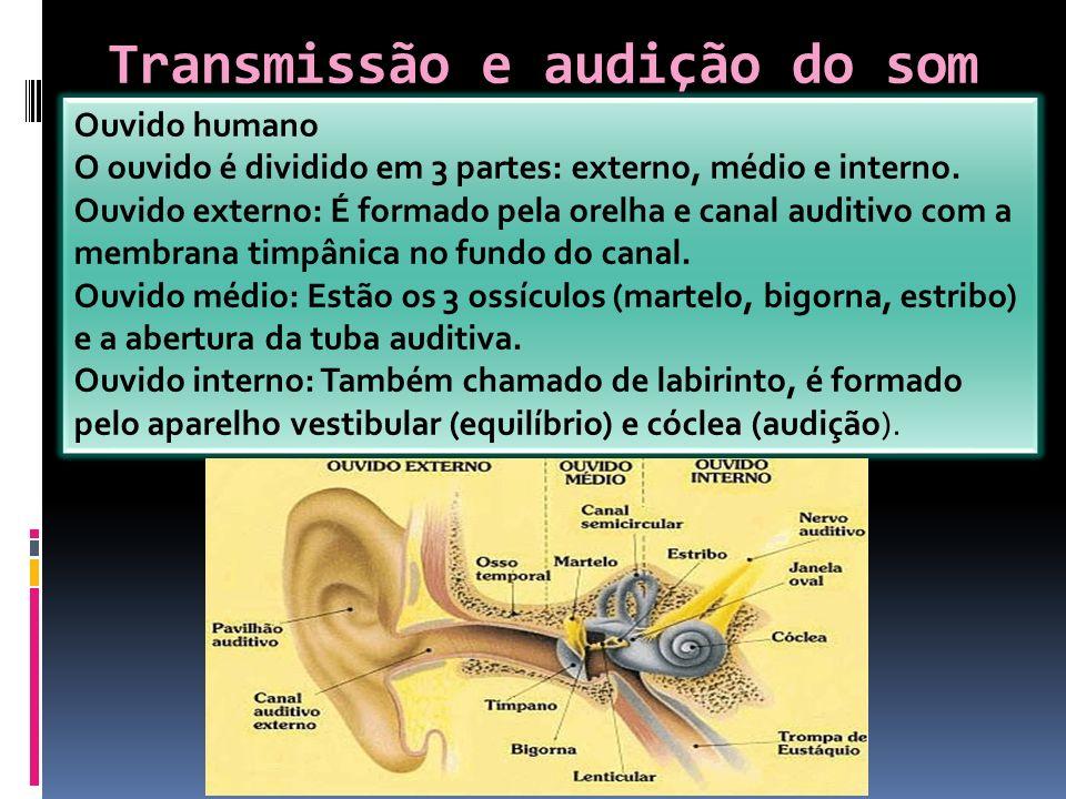 Transmissão e audição do som