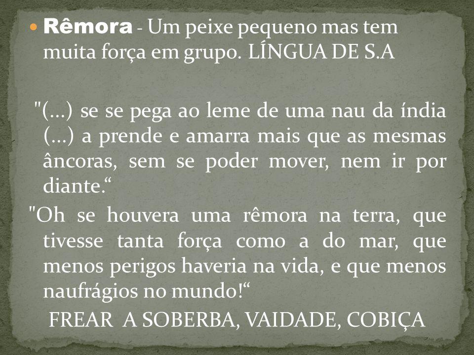 FREAR A SOBERBA, VAIDADE, COBIÇA