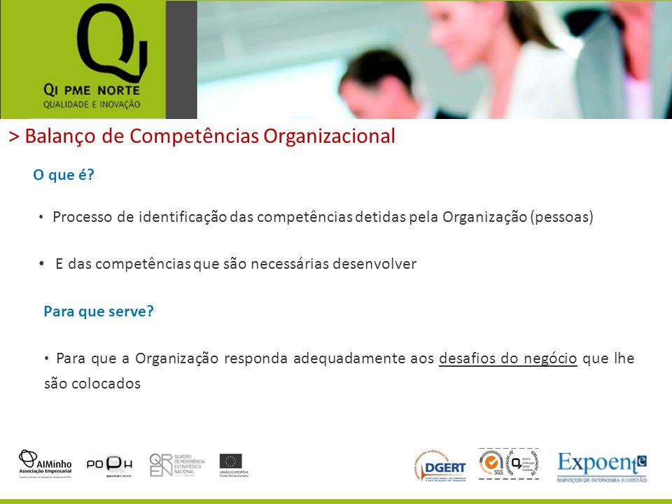 > Balanço de Competências Organizacional