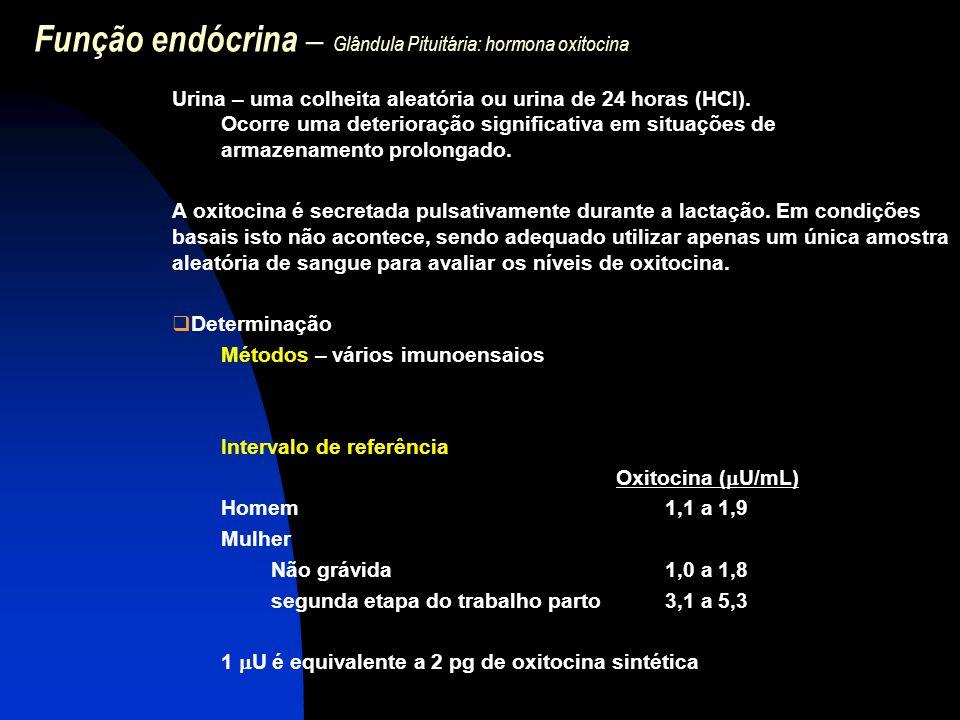 Função endócrina – Glândula Pituitária: hormona oxitocina