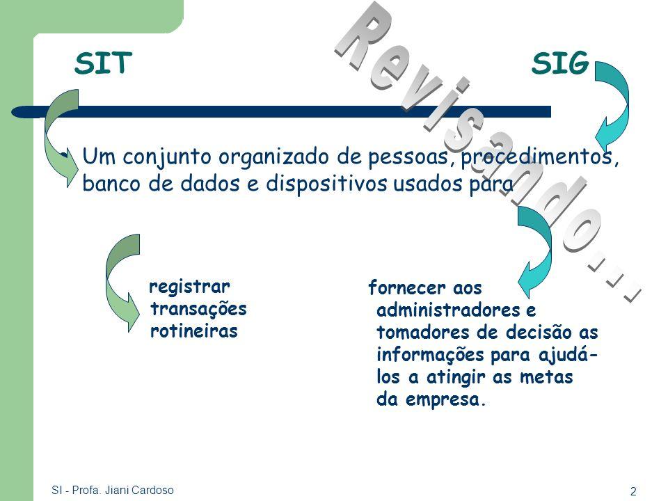 SIT SIG Revisando... Um conjunto organizado de pessoas, procedimentos, banco de dados e dispositivos usados para.
