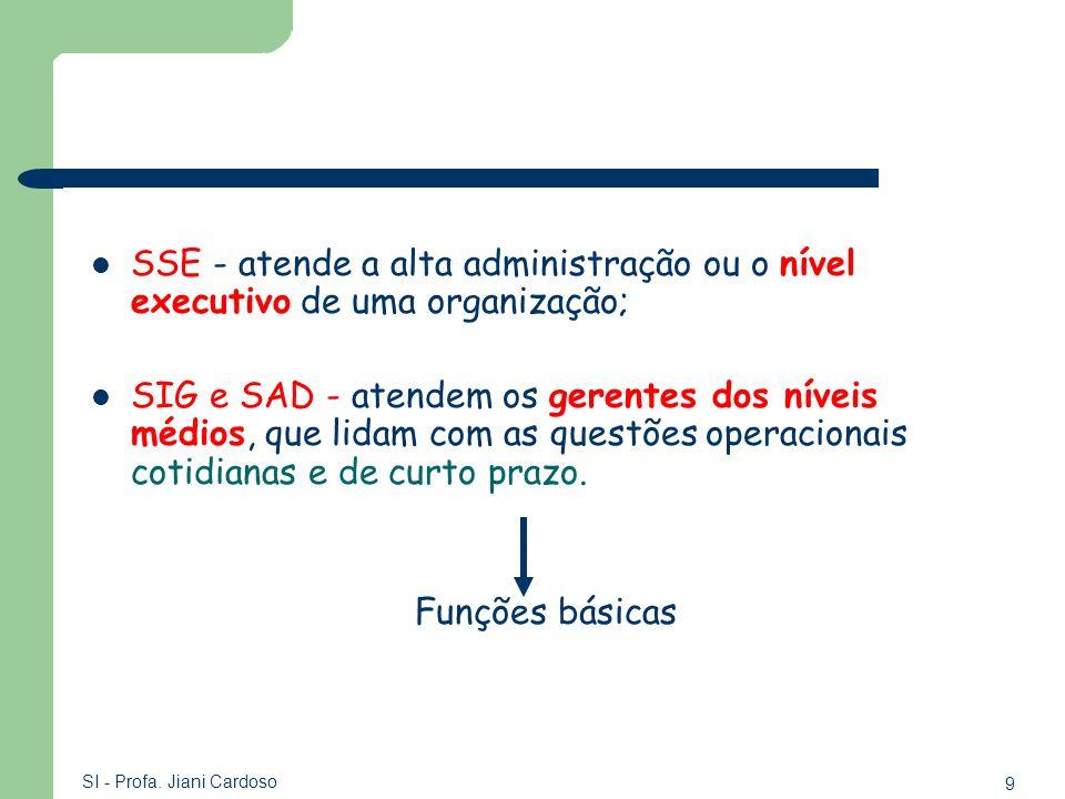 SSE - atende a alta administração ou o nível executivo de uma organização;