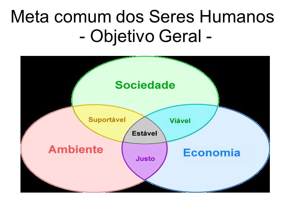 Meta comum dos Seres Humanos - Objetivo Geral -