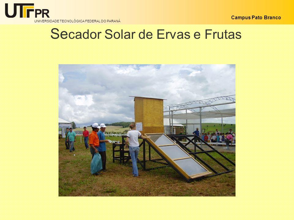 Secador Solar de Ervas e Frutas