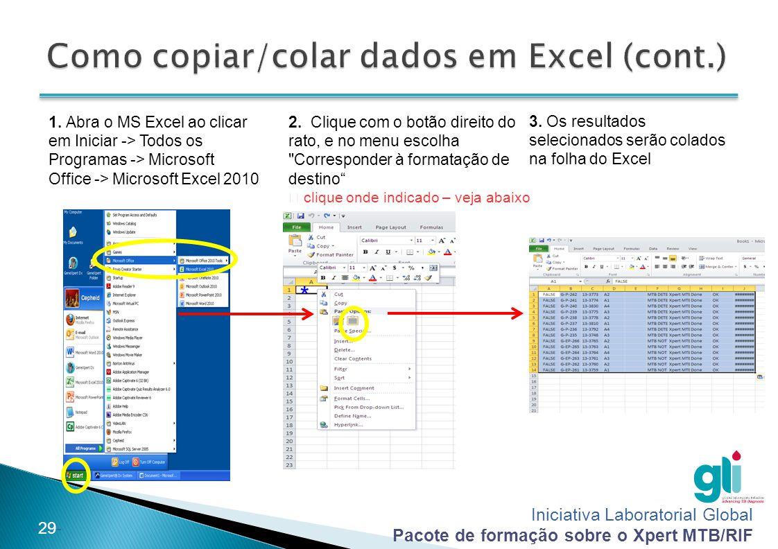 Como copiar/colar dados em Excel (cont.)