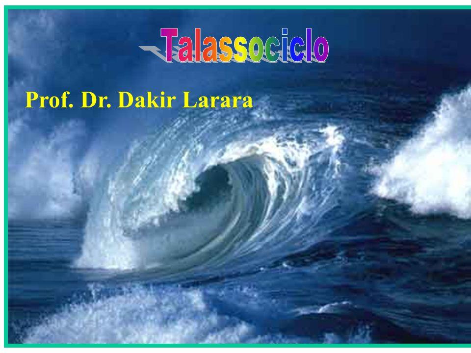 Talassociclo Prof. Dr. Dakir Larara