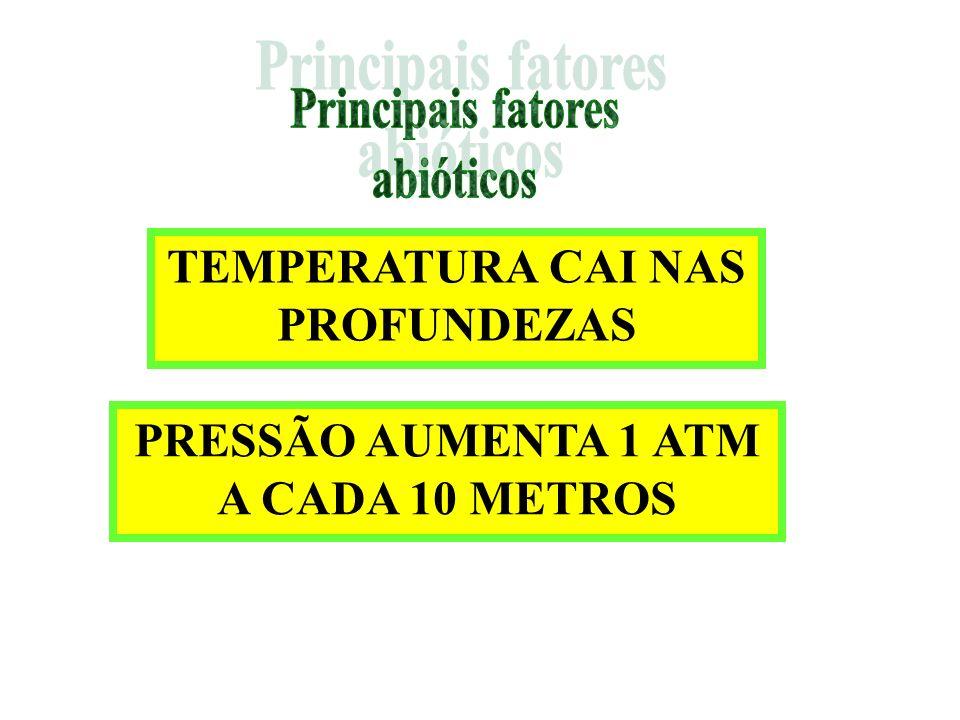 Principais fatores abióticos TEMPERATURA CAI NAS PROFUNDEZAS PRESSÃO AUMENTA 1 ATM A CADA 10 METROS