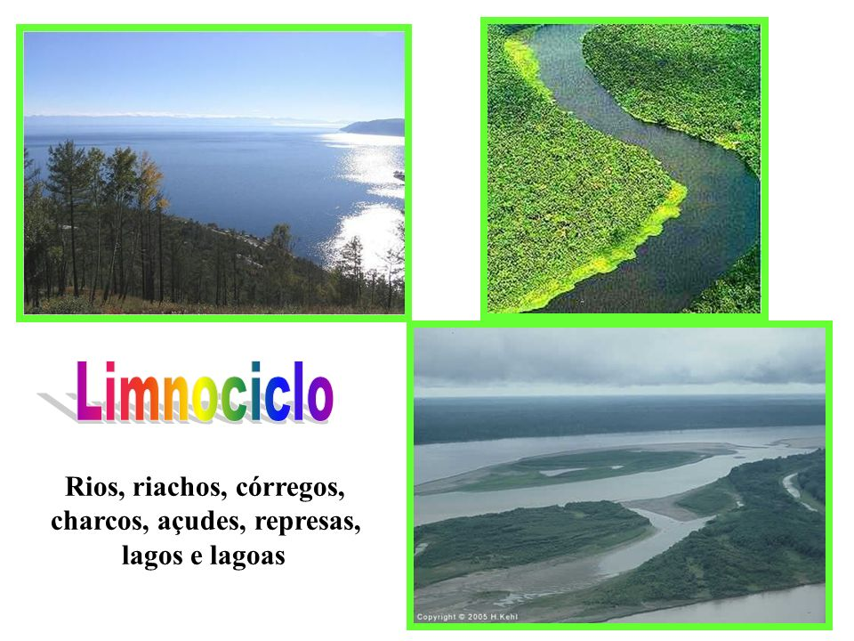 Limnociclo Rios, riachos, córregos, charcos, açudes, represas,