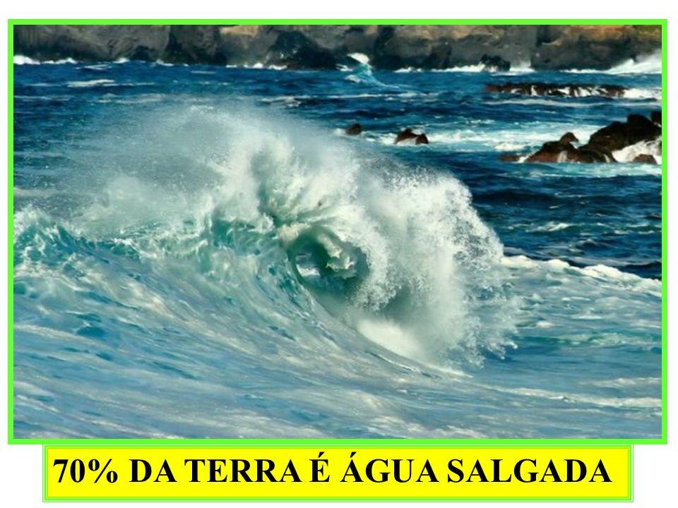 70% DA TERRA É ÁGUA SALGADA