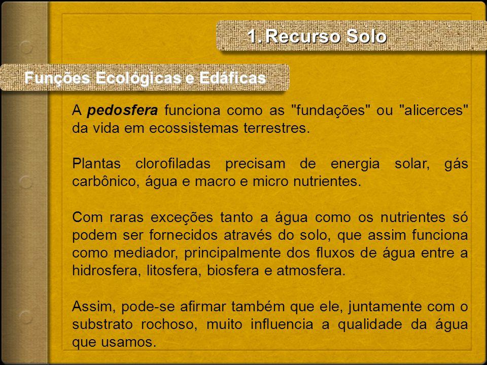 Recurso Solo Funções Ecológicas e Edáficas