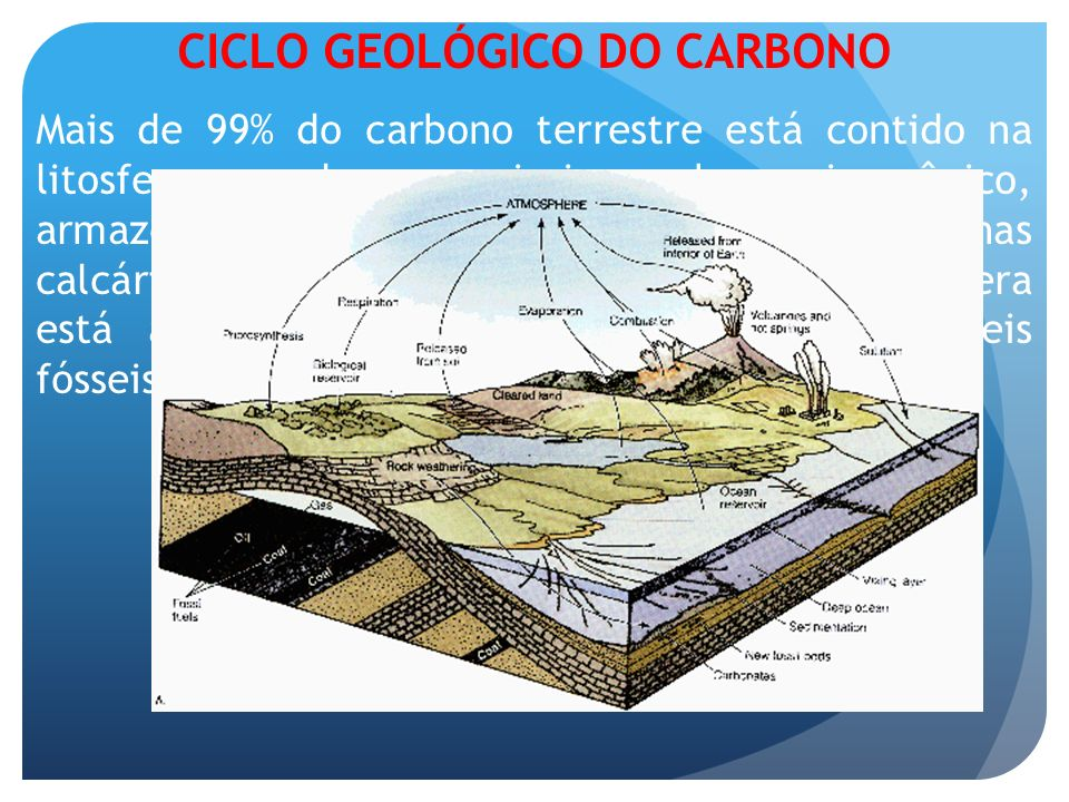 CICLO GEOLÓGICO DO CARBONO