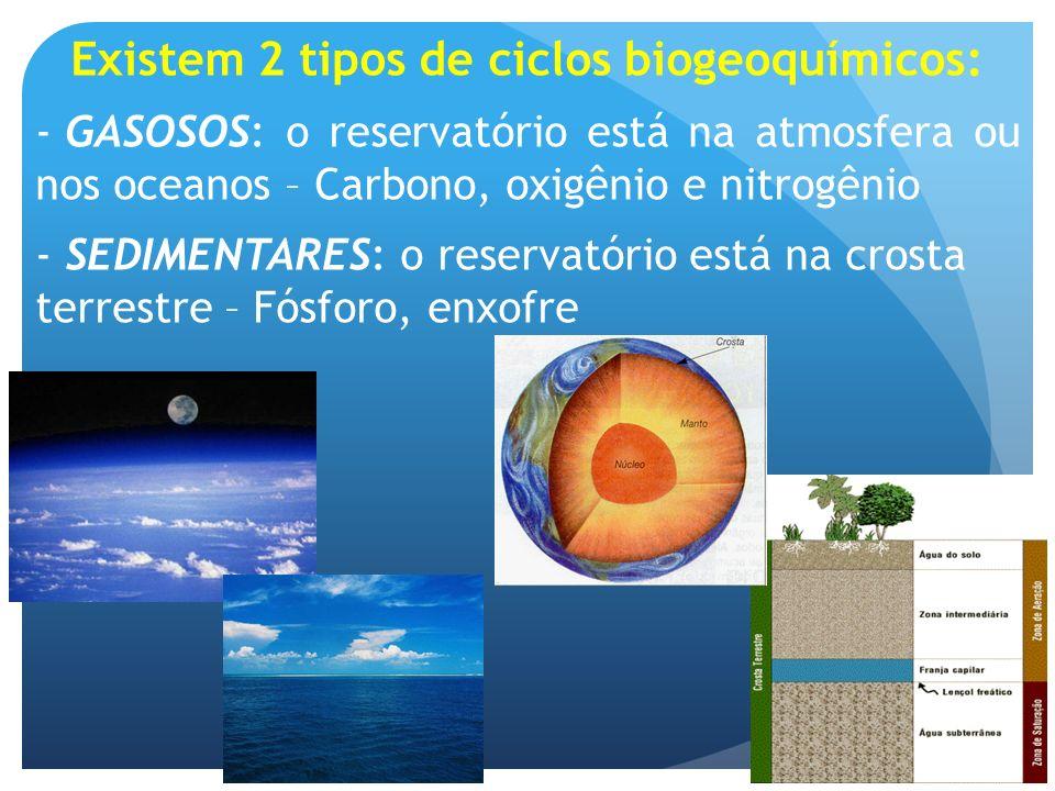 Existem 2 tipos de ciclos biogeoquímicos: